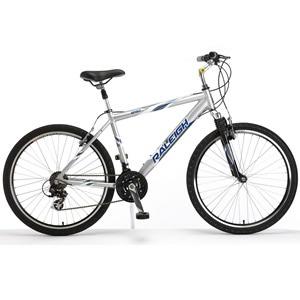 raleigh-bikes